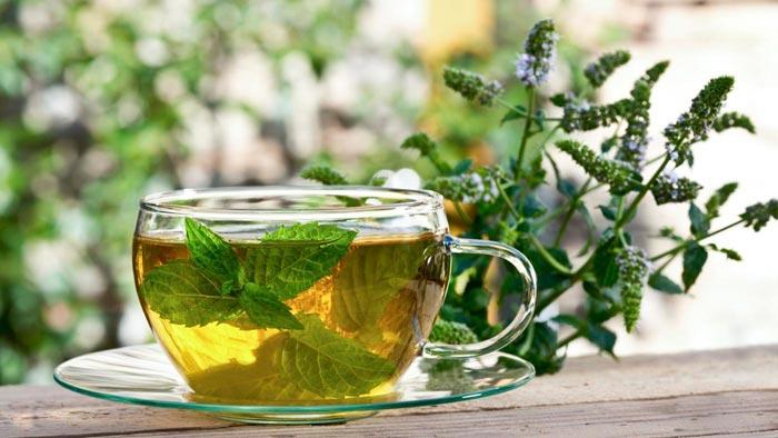 чай с мятой и мелиссой