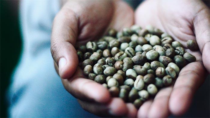 кофейные зерна Пибери