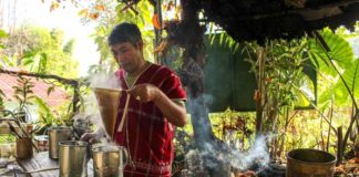 кофе в тайланде