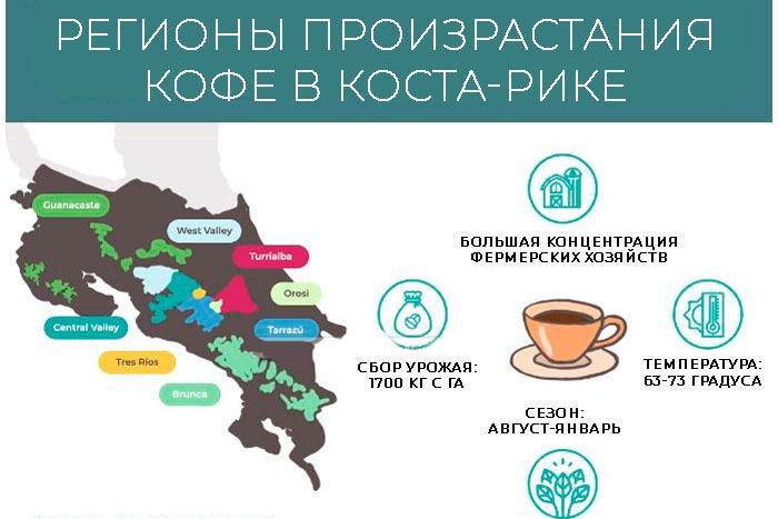 регионы произрастания кофе